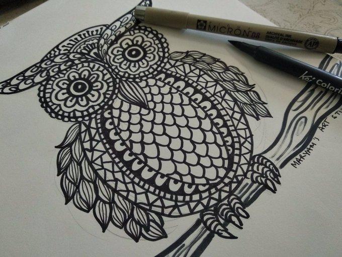 Owl from women in neighbourhoods project